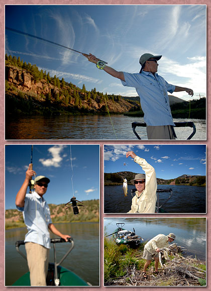 lower colorado (colorado) river fishing