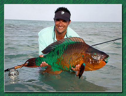 santiago seeber with a 30+ pound parrot fish