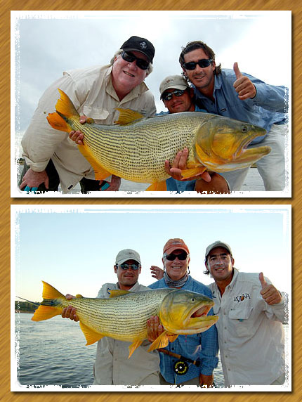 bert horn and cole eslyn with nice dorados from la zona (rio uruguay below salto grande), argentina